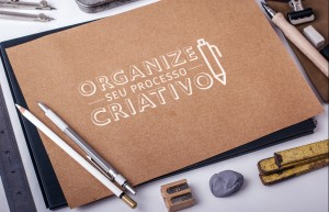 organizeseuprocesso